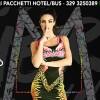 Cocorico Mamacita Summertour17