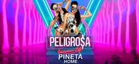 Friday Peligrosa Pineta Home