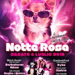 notte rosa classic rimini 2013
