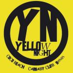 yellow night carnaby rimini notte gialla 2014